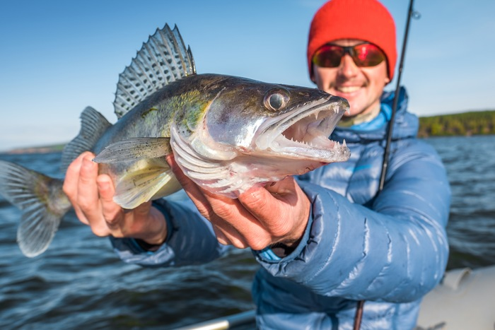 7 Ways to Identify Your Catch Every Time