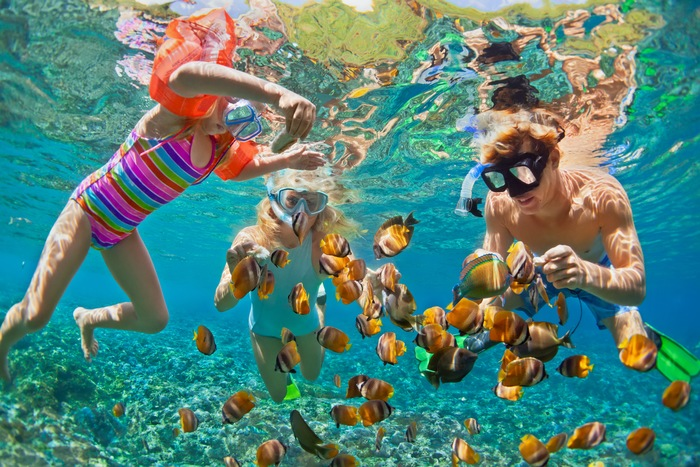 Beneath the Surface: Robalo's Guide to Snorkeling